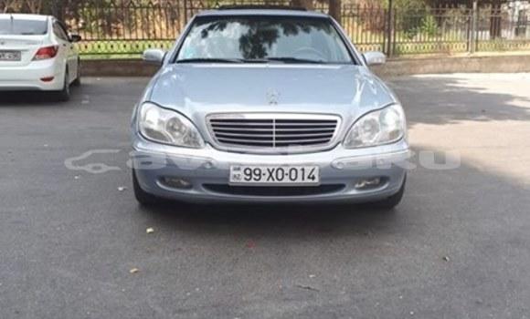 Buy Used Mercedes‒Benz S–Class Silver Car in Baki in Abseron